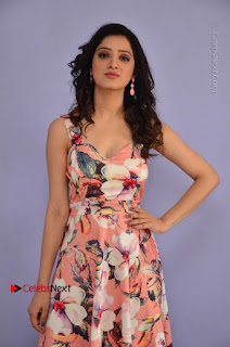 Richa Panai Pictures in Sleeveless Floral Long Dress at Rakshaka Batudu Movie Pre Release Function