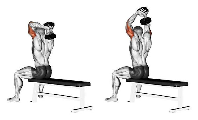 5 Best Home Triceps Dumbbell Exercises to Build Massive Arms