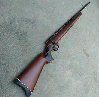 senapan big game terbaik berburu babi