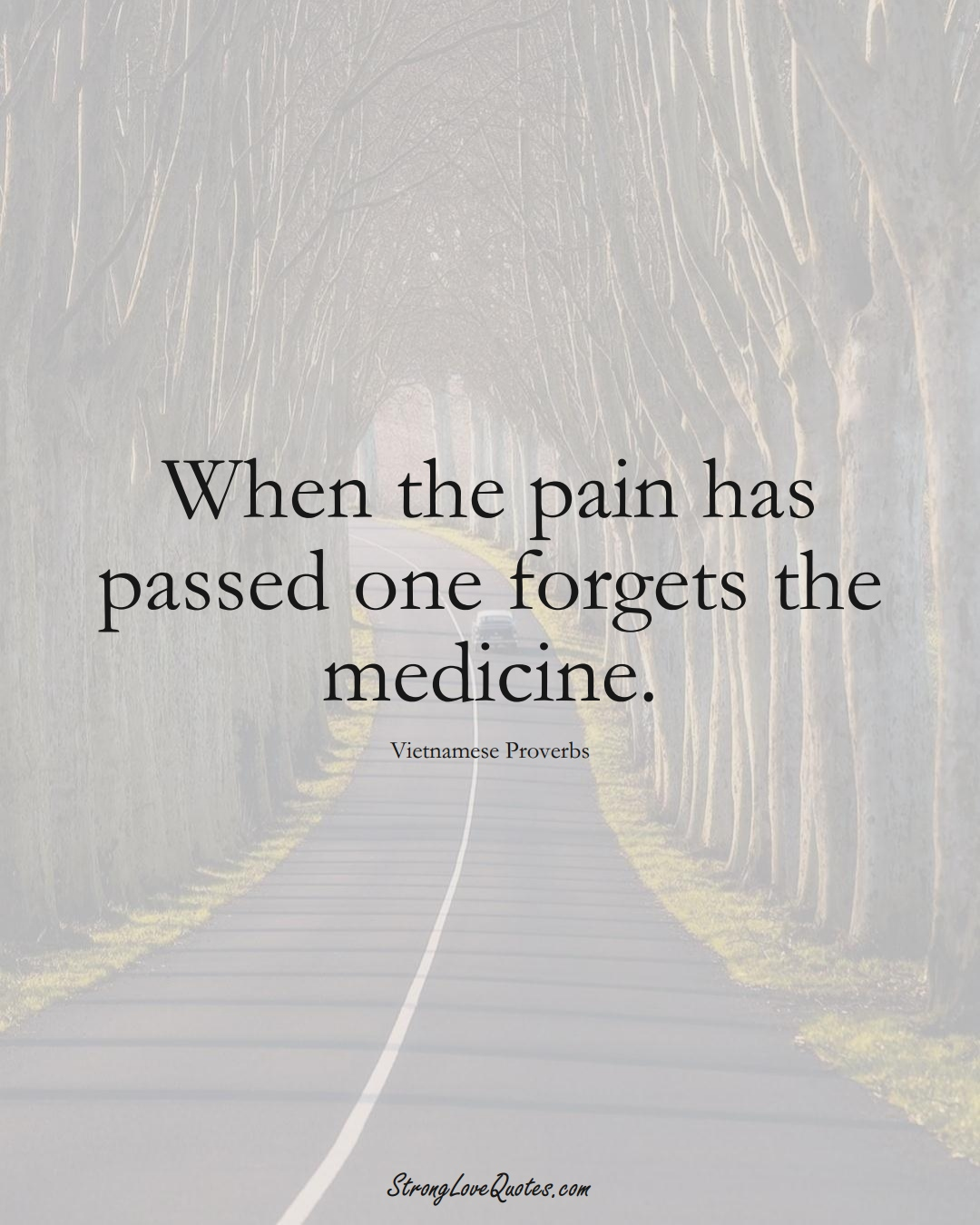 When the pain has passed one forgets the medicine. (Vietnamese Sayings);  #AsianSayings