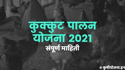 Maharashtra kukut palan yojana