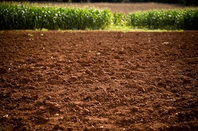 Definisi Tekstur Dan Kesuburan Tanah