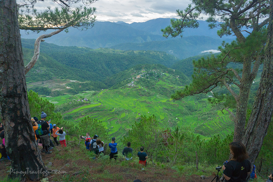 Clear vista of Maligcong Rice Terraces