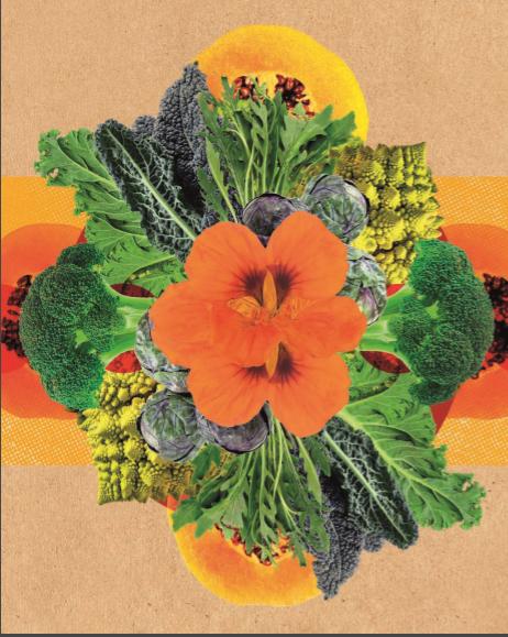 nutrients,nutrient,marijuana nutrients,hydroponic nutrients,weed nutrients,plant nutrients,nutrition,nutrients in hindi,organic nutrients,advanced nutrients,cannabis nutrients,6 essential nutrients,nutrients and their functions,7 nutrients,main nutrients,coco nutrients,remo nutrients,micro nutrients,macro nutrients,nutrient names,nutrients in food,mixing nutrients,nutrient dense,veg nutrients weed,foxfarm nutrients,what are nutrients