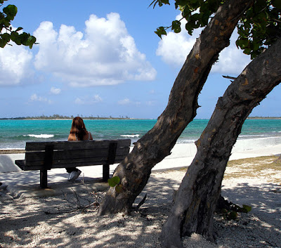 Woman sitting on bench under seagrape tree by the sea.
