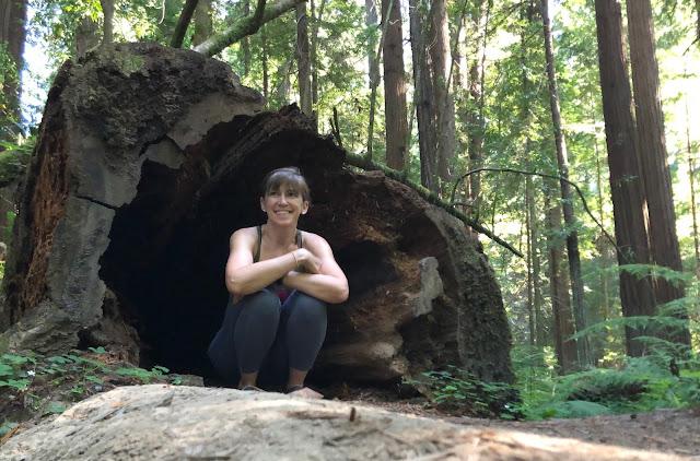woman sitting in hollow tree trunk
