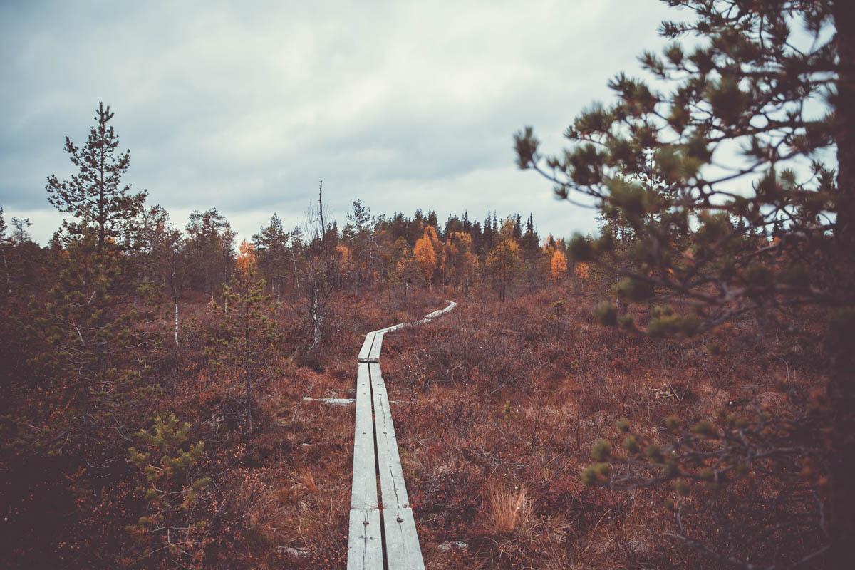 Karhunkierroksella: Miten suhtautua kun vaellus ei menekään suunnitelmien mukaan?
