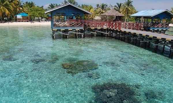 Desa Wisata Sauwandarek Destinasi Memukau Nan Asri Di Papua Detik Info