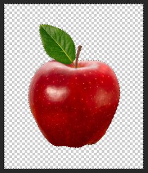 Cara Menghapus Background pada Photoshop