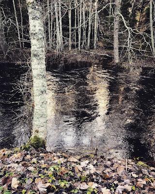 Pohjajoki on marraskuussa korkealla