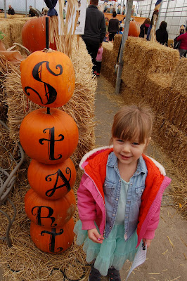 Dutch Growers pumpkin maze