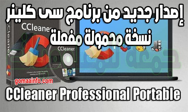 CCleaner Professional 5.69.7865 Portable