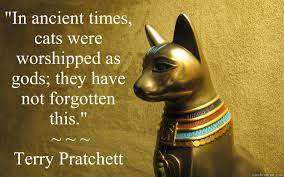 Meme de humor sobre Terry Pratchett