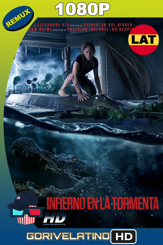 Infierno en la Tormenta (2019) BDRemux 1080p Latino-Ingles MKV