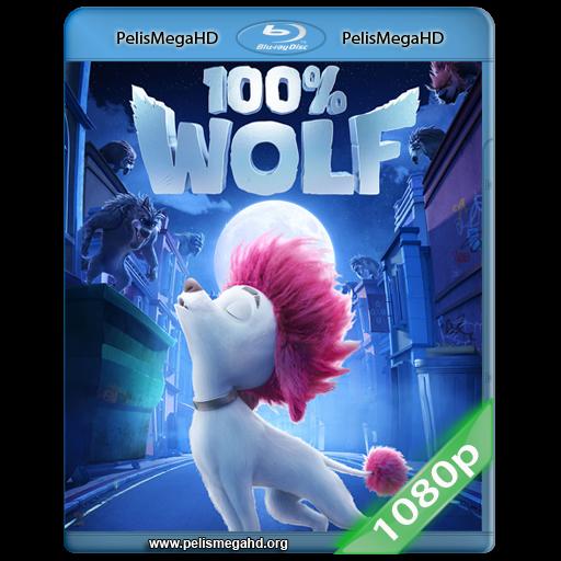 100 Lobo 2020 Full 1080p Hd Mkv Espanol Latino Pelismegahd 4k 1080p 720p 3d Sbs Dvdrip Mkv