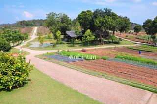 7 Destinasi wisata favorit di Pulau Bintan
