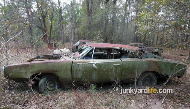 Just A Car Guy About 19 Dozen Classic Cars Near Houston A Scrap Yard Owner Left The Cars On