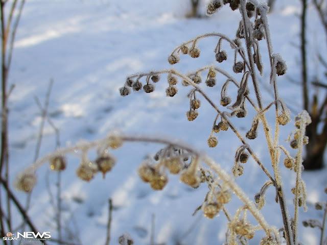 В Башкирии продолжительность рабочего дня сокращается из-за холода