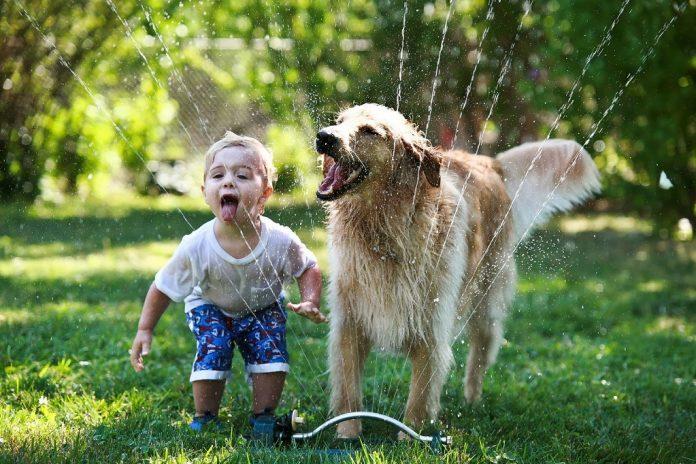 Evcil hayvan beslemenin çocuklara faydası