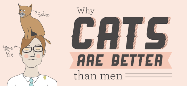 Why-Cats-Are-Better-Than-Men  #infographic