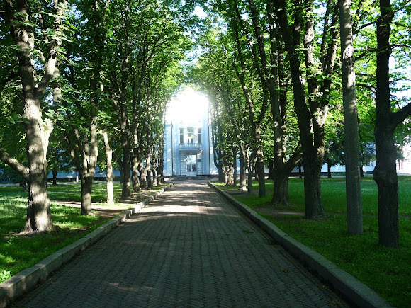 Конотоп. Городской парк