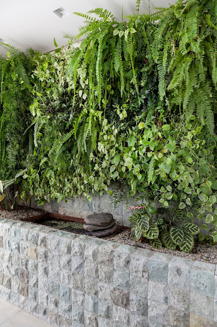 varanda-verde-com-parede-verde-de-folhagens-e-plantas