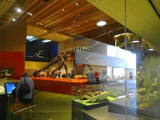 queensland-museum