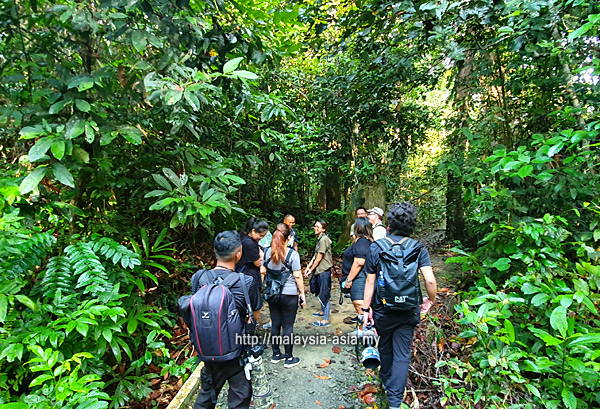 Malaysia Tour Guide Covid 19