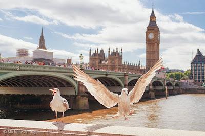 Ponte sobre o rio Tâmisa e Parlamento de Londres