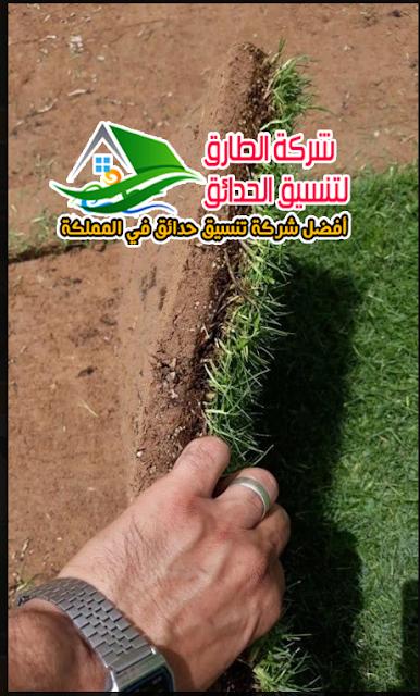 شركة تنسيق حدائق عشب صناعي  بالرس