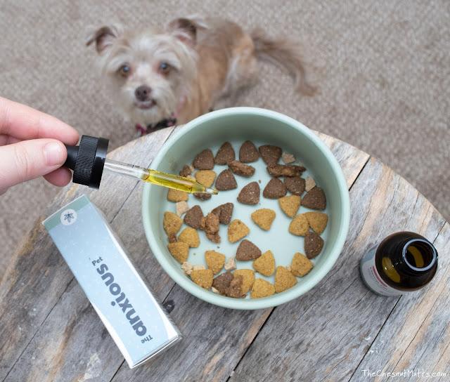 organic cbd hemp oil for dogs