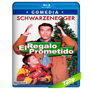 El regalo prometido (1996) BRRip 720p Audio Dual Latino-Ingles