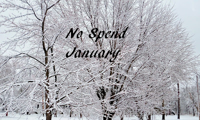 No Spend January Challenge (the rules) 2017