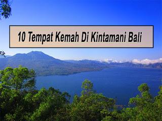 Inilah 10 Tempat Kemah Di Kintamani Bali