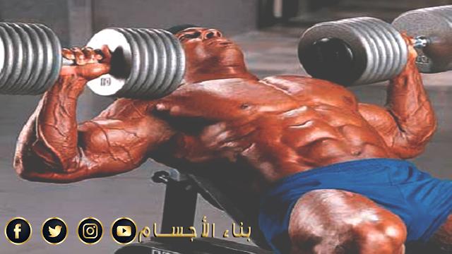 اسرع طريقة لتضخيم عضلات صدرك بأسبوع