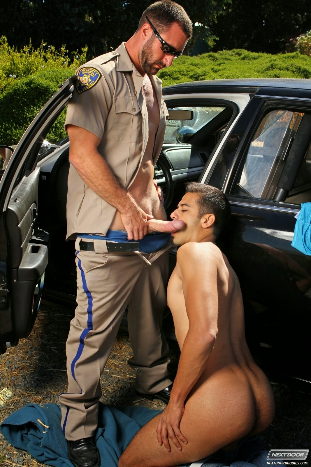 gay car blowjob