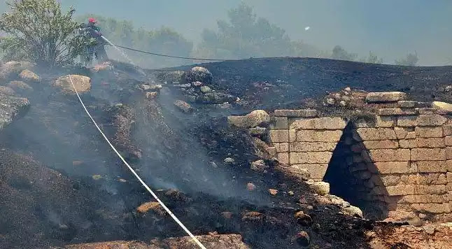 Φωτιά στις Μυκήνες: Βαρύτατες οι ευθύνες της Εφορείας Αρχαιοτήτων Αργολίδας