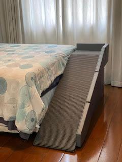 buldog acesso a cama