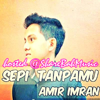 Amir Imran - Sepi Tanpamu MP3