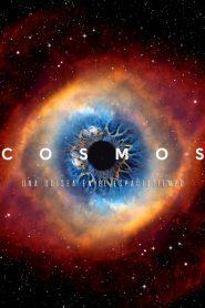 Cosmos todas las Temporadas Online / Latino