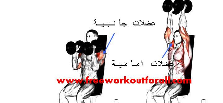 برنامج-تمارين-عضلات-الاكتاف