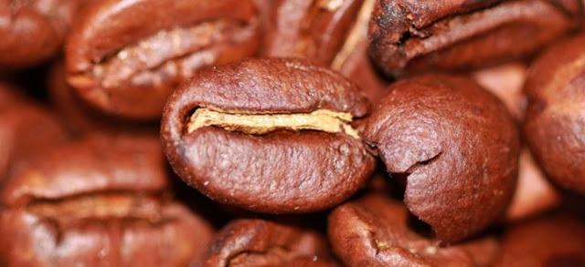 Minum Peaberry Kopi (kopi lanang)