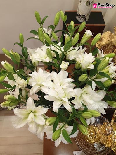 Mẫu hoa ly kép trắng