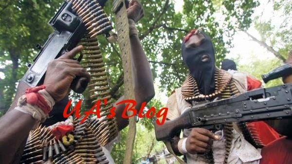 Gunmen allegedly kill 7 policemen in Abuja