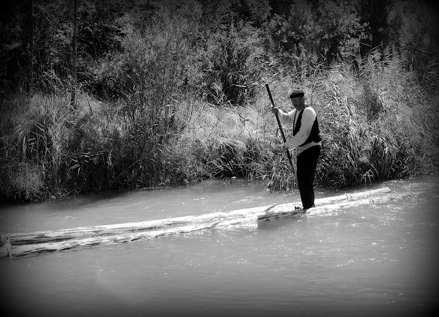 Ganchero bajado el río Tajo en un tronco
