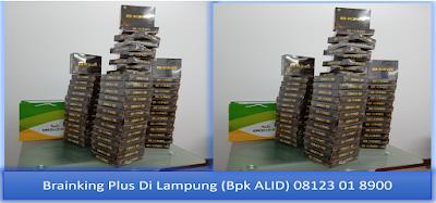 PROMOSI, 08123 01 8900 (Bpk. Alid), Brainking Plus di lampung