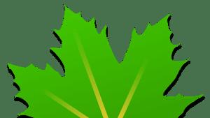 تحميل برنامج Greenify لتسريع هواتف الاندرويد