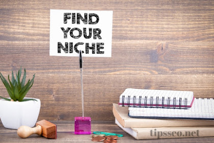 4 Cara Memilih Niche Website Untuk Blogger Pemula