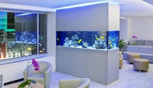 Desain Model Aquarium Unik Untuk Ruang Tamu