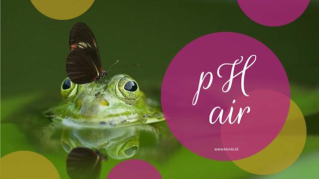 ph air - biovisi.id